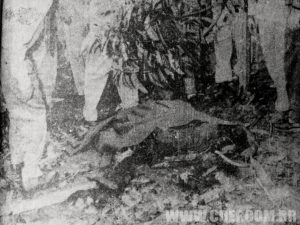 Restos mortais do piloto da Esquadrilha da fumaça.
